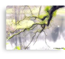 Almost Touching Canvas Print
