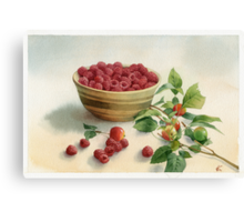 Stillife with raspberries Canvas Print