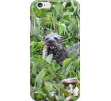 North American River Otter iPhone Case/Skin