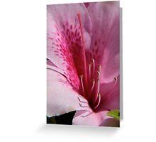 Azalia Greeting Card