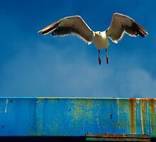 Take off by Eyal Nahmias