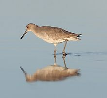 morning reflection by kathy s gillentine
