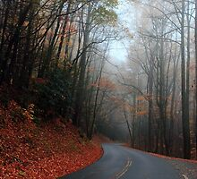 heading down the mountain by kathy s gillentine