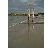 Two Stumps, Mornington Peninsula Photographic Print