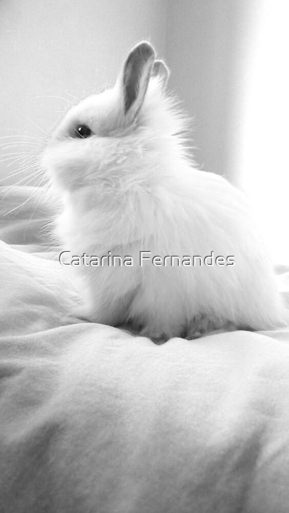 Maggie by Catarina Fernandes