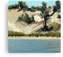 Lake Michigan Dune Canvas Print