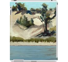 Lake Michigan Dune iPad Case/Skin