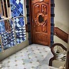 Gaudi's landing by Robyn Lakeman