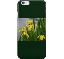 Find The Damselfly among the Yellow Irises.. iPhone Case/Skin