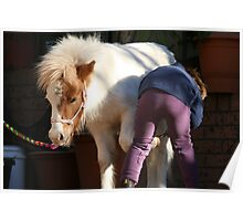 Patient Pony  Poster