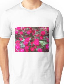 Reflection of Red Roses Unisex T-Shirt