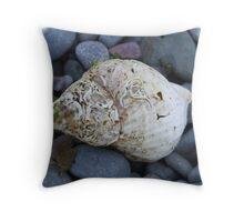 Single Shell Throw Pillow