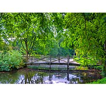 Latice Bridge Photographic Print