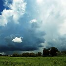 heading into the storm by kathy s gillentine