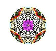 Butterfly Mandala art Photographic Print