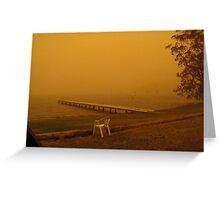 Dusty Lake Greeting Card