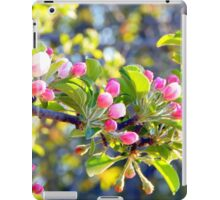 Its springtime in the Annapolis Valley iPad Case/Skin