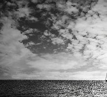 Torquise Dream by Jonezuart