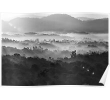 Misty morning in Black and white Poster