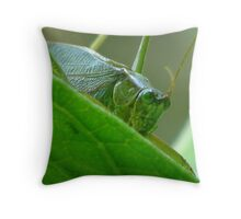 Katydid Close Up! Throw Pillow