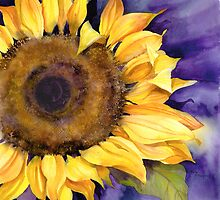 Sunflower by artbyrachel