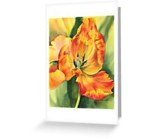 Flame Tulip Greeting Card