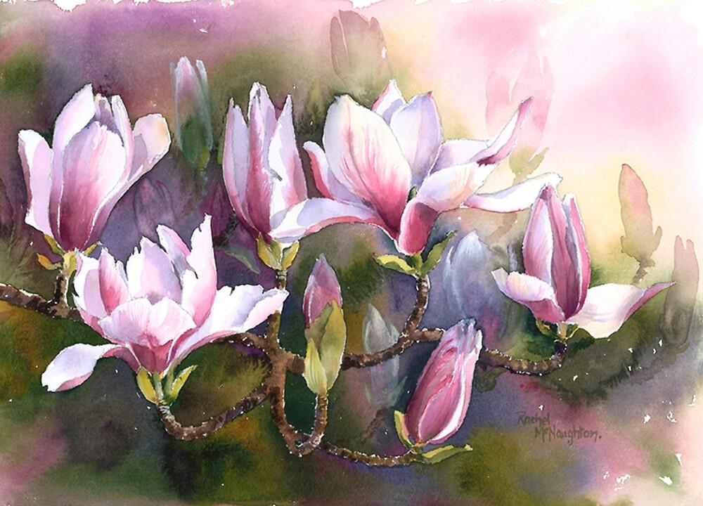 Magnolia Bough by artbyrachel