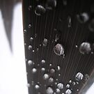 black bubbles 2 by Annabelle Evelyn
