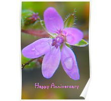 Anniversary Card Poster