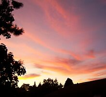 Its Another Tukwila Sunset by Jess Mo