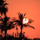 tropical sunrise by kathy s gillentine