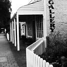 The Gallery by STEPHANIE STENGEL   STELONATURE PHOTOGRAHY