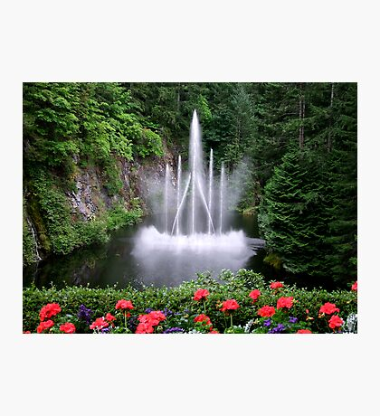 Flowers and the Fountain Photographic Print