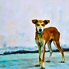 Red Dog by John Corney