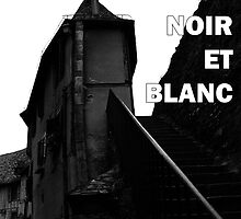 L'Enchantement Monochromatique en France Noir Et Blanc by ragman