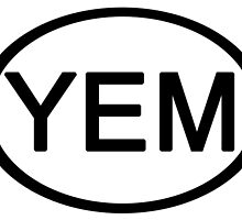 Phish YEM you Enjoy Myself Euro Car Sticker by highbankspro
