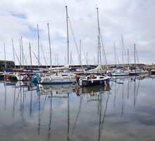 Lyme Regis Harbour - May 2015 by Susie Peek