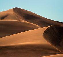 Landscapes & Plants of the High Desert by transformx