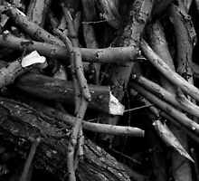 Chaotic Branches Black and White by Shannon Workman