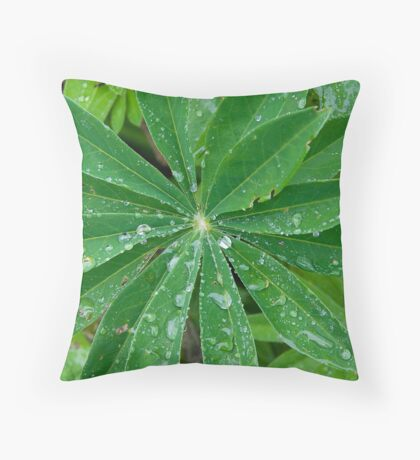 Rain1 Throw Pillow