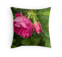 Rain7 Throw Pillow