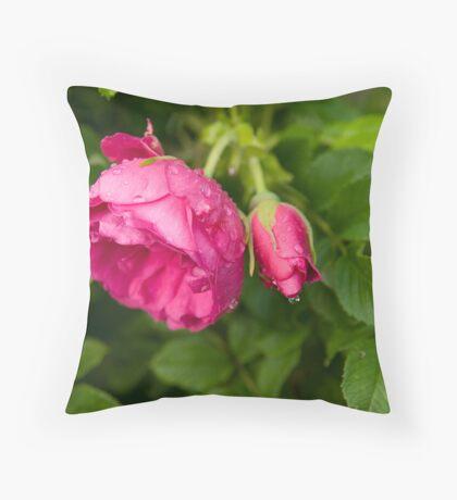 Rain7 Throw Pillow