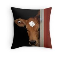 Little Bobby Calf Throw Pillow