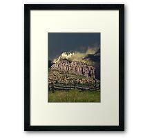 3885 Framed Print