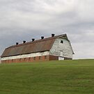 Barn at NCSD by Edyth Counter-Griffis