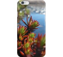 Water's Edge iPhone Case/Skin