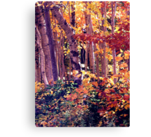 The Woods are Ablaze Canvas Print