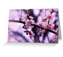 Sakura (4) Greeting Card