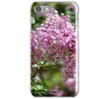 Spring Lilac iPhone Case/Skin
