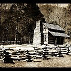 Cades Cove Cabin by Angelica Miller